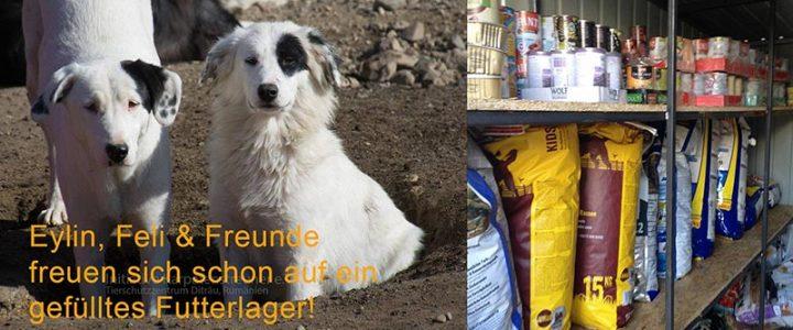 Aktion WINTERVORRAT – für unser Tierschutzzentrum Ditrău – GATE of Life