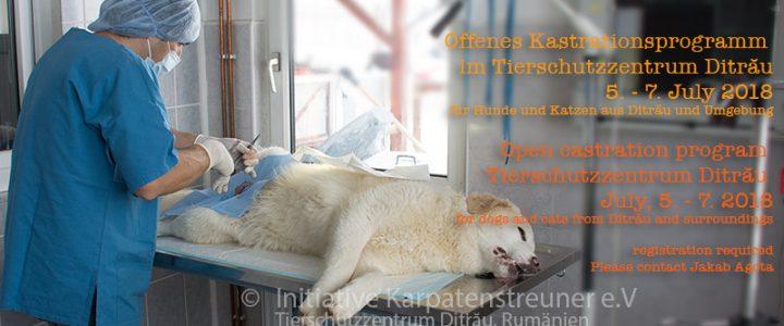 Öffentliche Kastrationsaktion im Tierschutzzentrum Ditrău für Hunde und Katzen aus Ditrău und Umgebung. 5. – bis 7. Juli