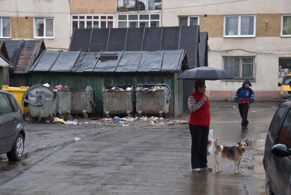 übervolle Mülltonnen mit Menschen und Hunden