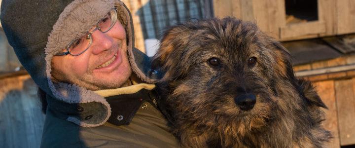 Wir benötigen dringend Eure Hilfe für Levente und bei der Vermittlung von Hunden